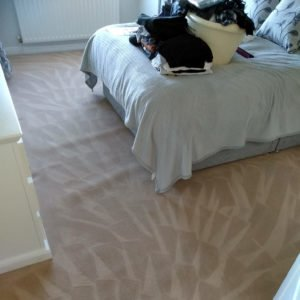 a freshly cleaned bedroom carpet
